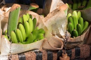 rap the banana stems with foil or plastic